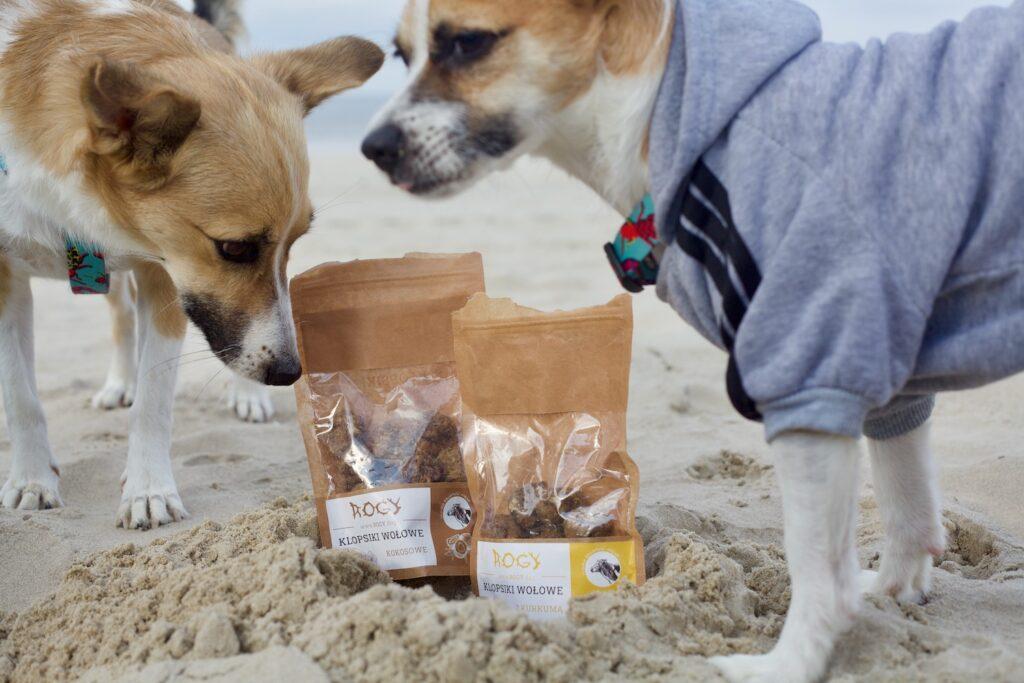 Dwa kundelki stoją na piasku na plaży, jeden ubrany jest w bluzę dla psa. Pomiędzy nimi w piasku stoją dwa opakowania przysmaków dla psa