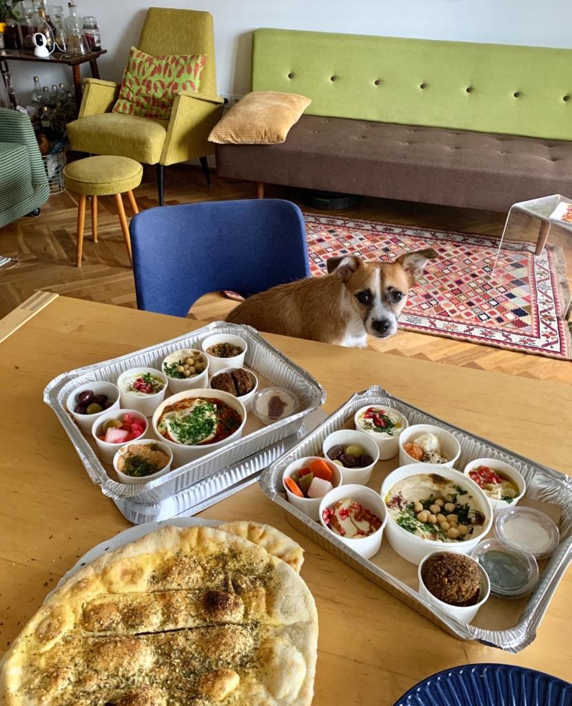pies siedzi przy stole zastawionym jedzeniem